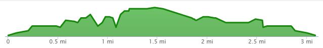DTW 5k Course Elevation